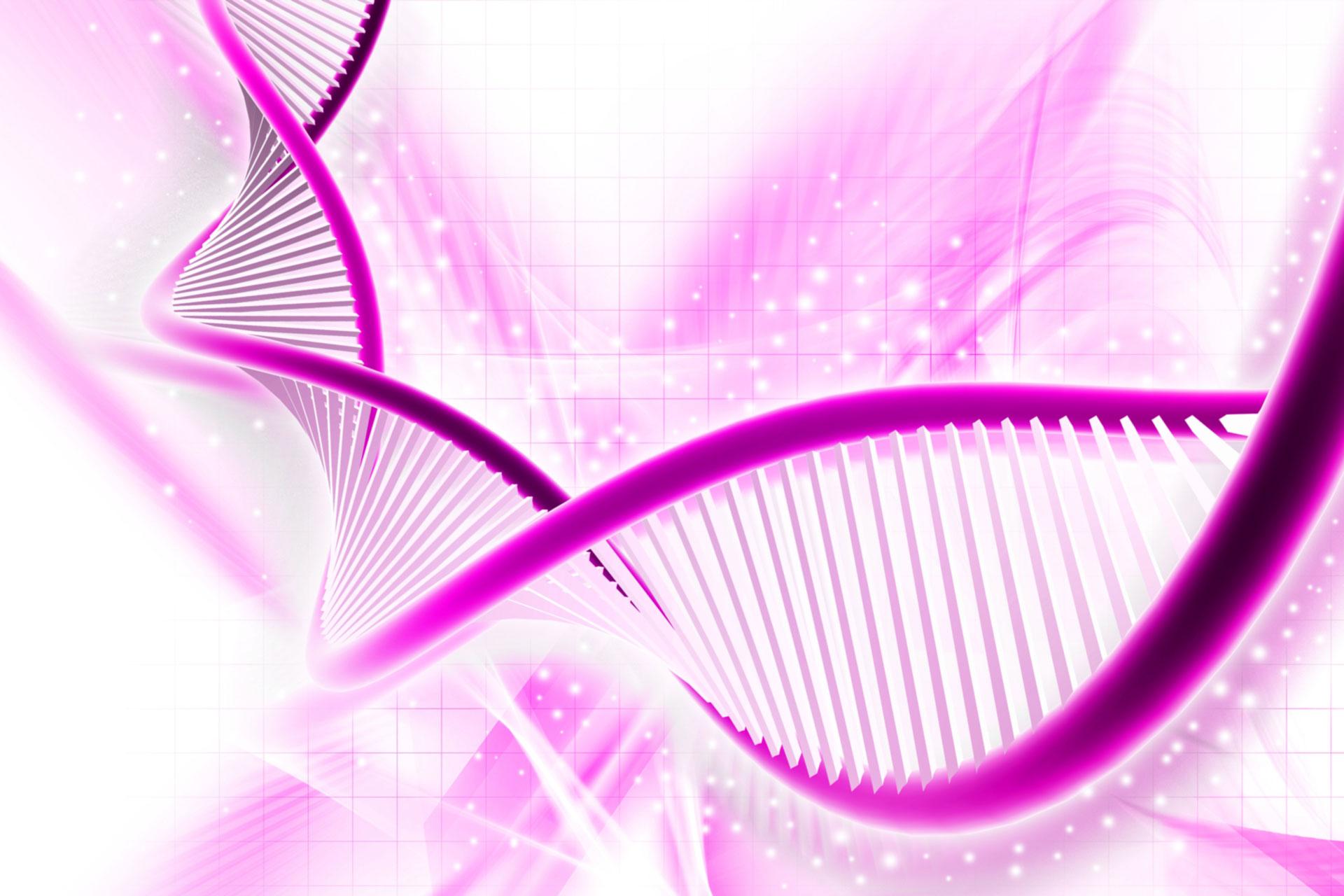 Dia.pro PCR