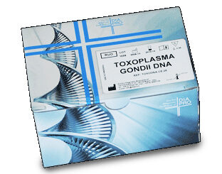 Dia.pro TOXOPLASMA GONDII DNA